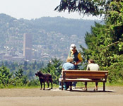 Featured Park: Mt Tabor Park